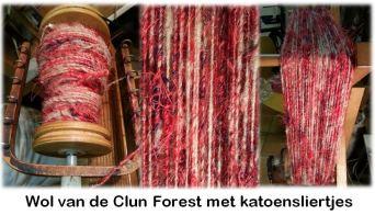 Clun Forest met katoensliertjes